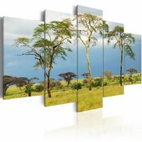Schilderij - Afrikaans groen, groen/blauw, 5luik, 2 maten