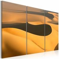 Canvas Schilderij - Grote Zandwoestijn, geel/zwart, 3luik, 2maten