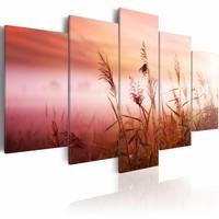 Schilderij - Mistige Weide, Roze/Rood, 5luik