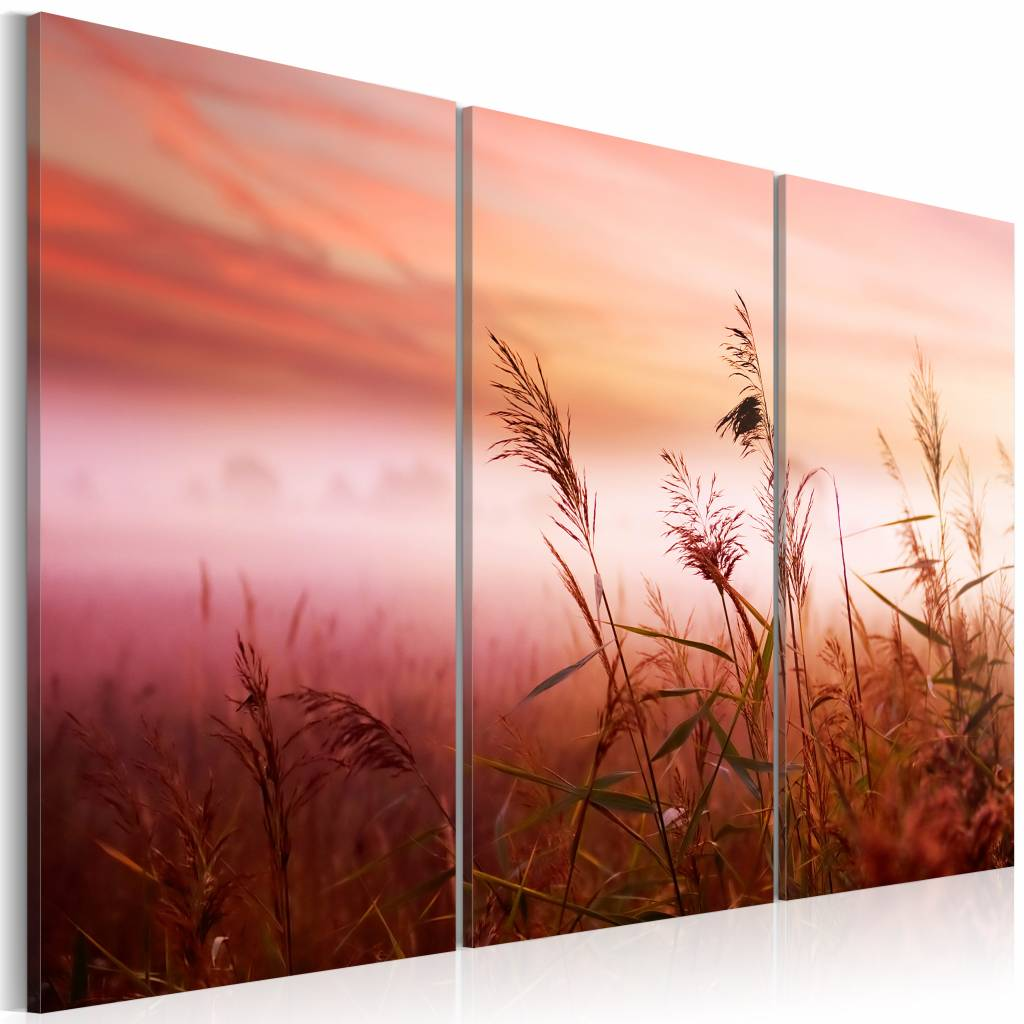 Schilderij - Mistige Weide II, 3luik , roze , wanddecoratie , premium print op canvas