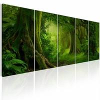 Schilderij - Tropische Jungle  , boom , 5 luik