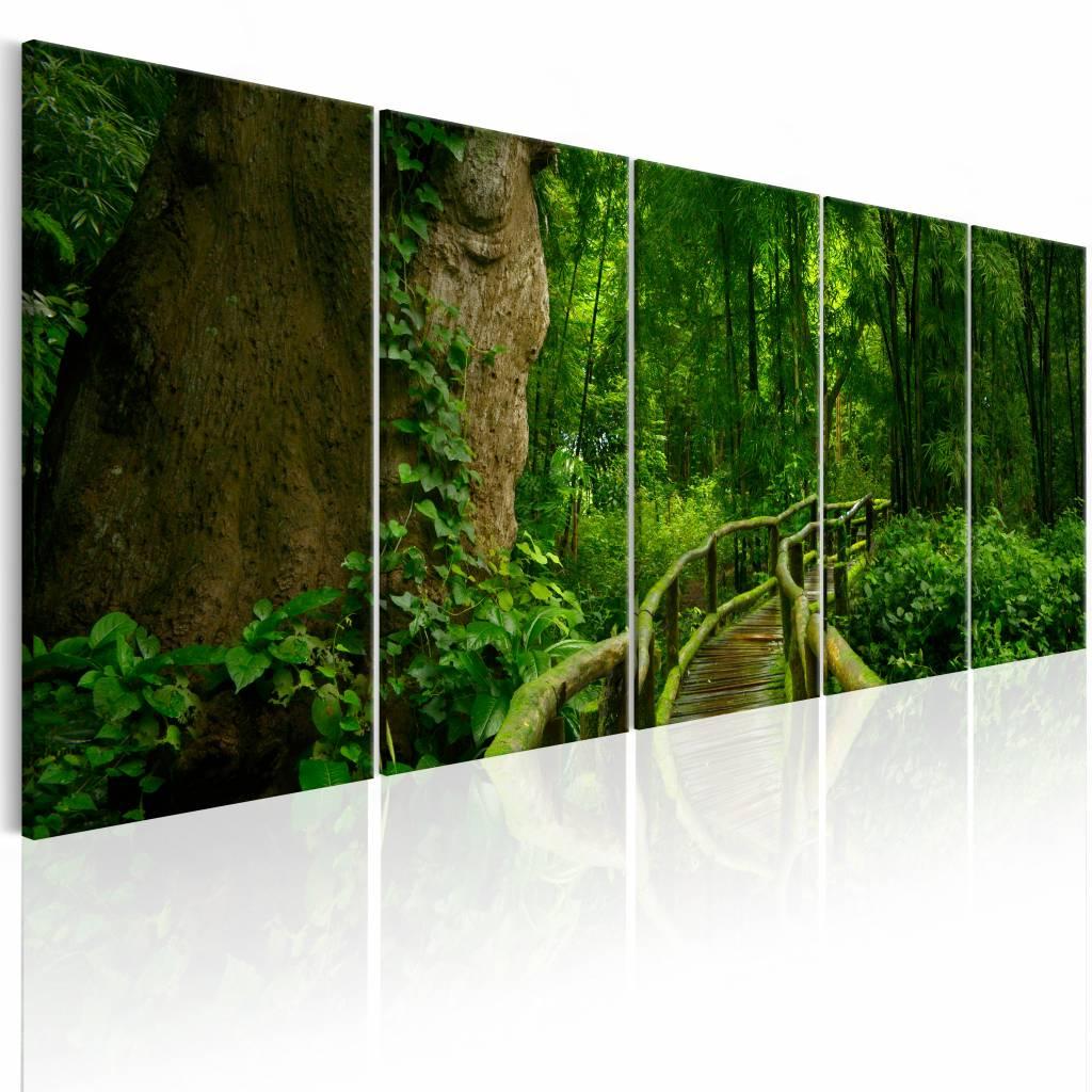 Schilderij - Onbekende paden in het bos , groen bruin , 5 luik