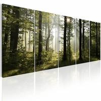 Canvas Schilderij - Zomer Mist , boom , groen bruin , 5 luik , 2 maten
