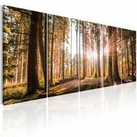 Schilderij - Schoonheid van de Natuur , oranje bruin , boom , 5 luik