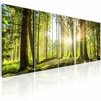 Schilderij - Zonlicht in het Bos , beige groen , 5 luik