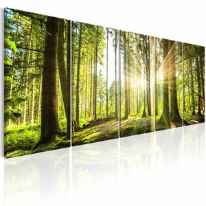 Canvas Schilderij - Zonlicht in het Bos , beige groen , 5 luik , 2 maten