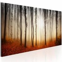 Schilderij - Herfst Mist , boom