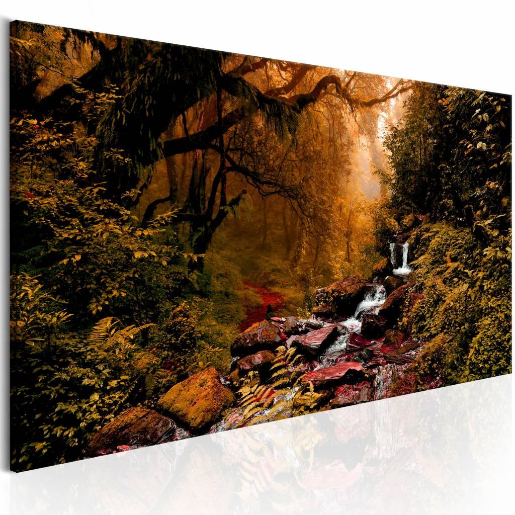 Schilderij - Magische Herfst , bos beek