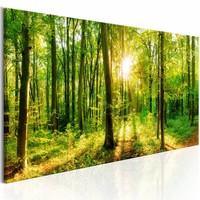Schilderij - Groene magie 150X50 , boom , geel groen , 1 luik