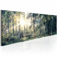 Schilderij - Ochtend magie , 150x50 , groen bruin , 1 luik
