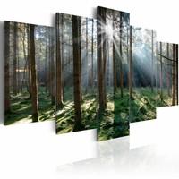 Schilderij - Sprookjesbos, Groen/Bruin, 5luik , premium print op canvas