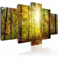 Schilderij - Sprookjesbos II, 5luik , groen bruin , premium print op canvas