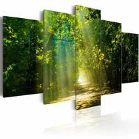 Schilderij - Zonnig Bospad ,Groen, 5luik