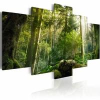 Schilderij - De Schoonheid van het Bos,  5luik