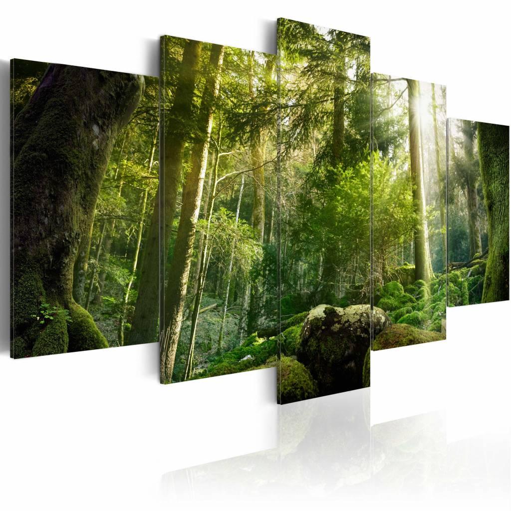 Schilderij - De Schoonheid van het Bos, 5luik , groen , premium print op canvas