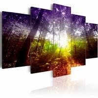 Schilderij - Regenboog Bos, Multi-gekleurd, 5luik