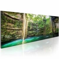 Schilderij - Verborgen Schat van de Natuur , groen bruin , premium print op canvas