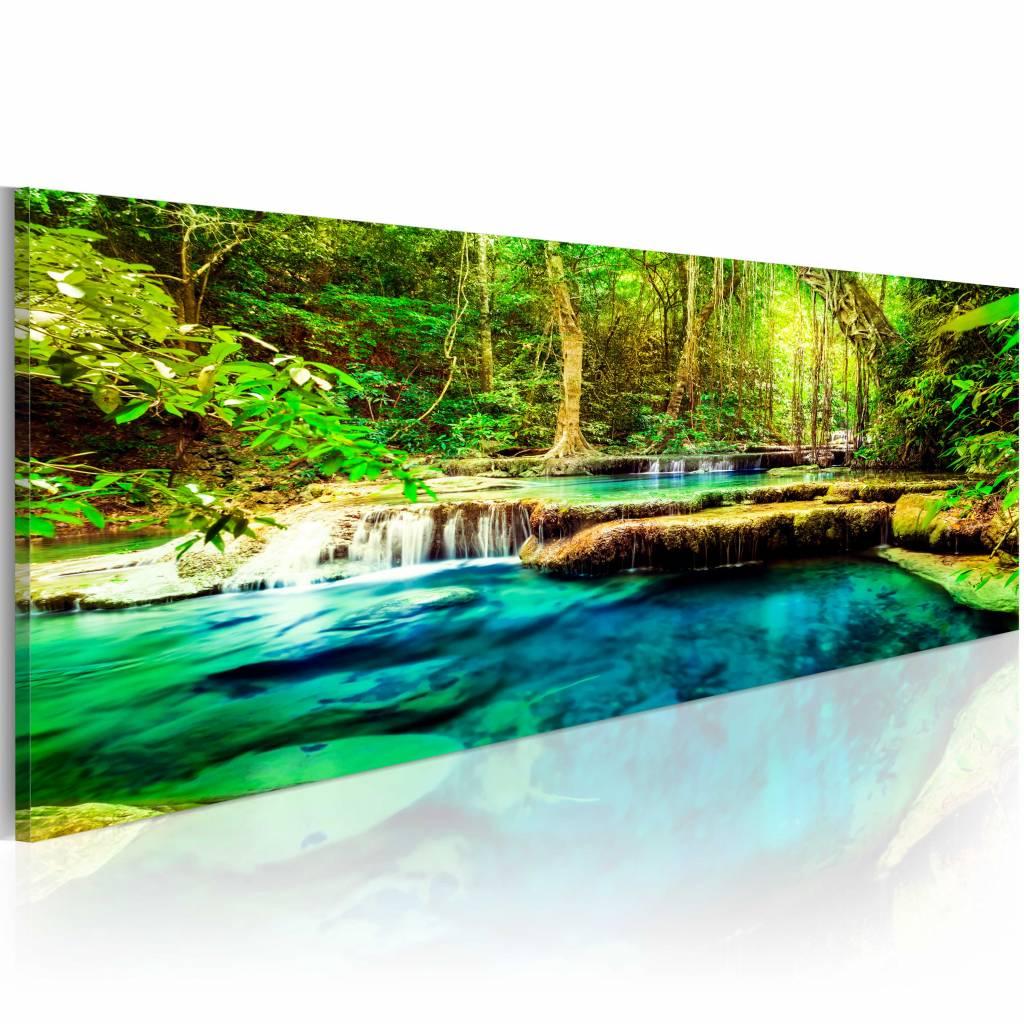 Schilderij - Juweel van de natuur , water bomen