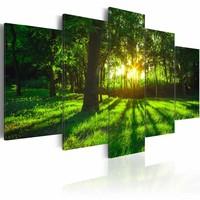 Schilderij - Ochtend in het Bos, Groen, 5luik