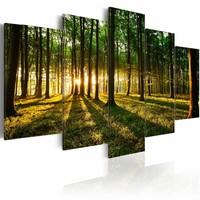 Schilderij - Avontuur in het Bos,  5luik , bruin groen , premium print op canvas