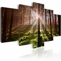 Schilderij - Stilte van de Herfst, 5luik , groen bruin ,  premium print op canvas