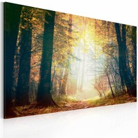 Schilderij - Schoonheid van de Herfst, 1 deel , bruin geel , premium print op canvas