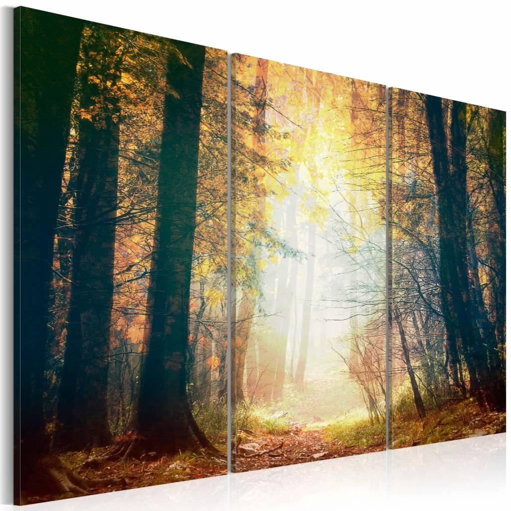 Schilderij - Schoonheid van de Herfst, 3luik , bruin geel , premium print op canvas