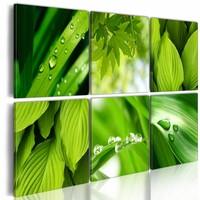 Schilderij - Groene Bladeren, Groen, 6luik