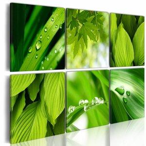 Schilderij Groene bladeren, 6luik, 2 maten, groen