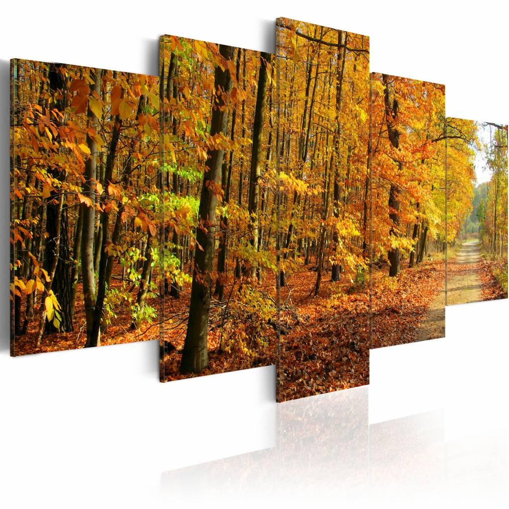 Schilderij - Kleurrijke Bladeren, 5luik , bruin , premium print op canvas