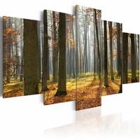 Canvas Schilderij mooi landschap, 5luik, 2 maten