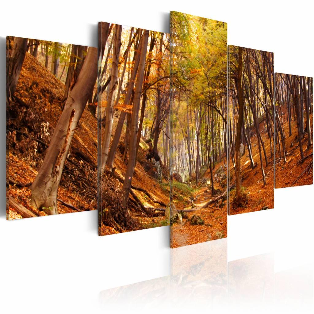 Schilderij - Oranje Herfst, 5luik , premium print op canvas