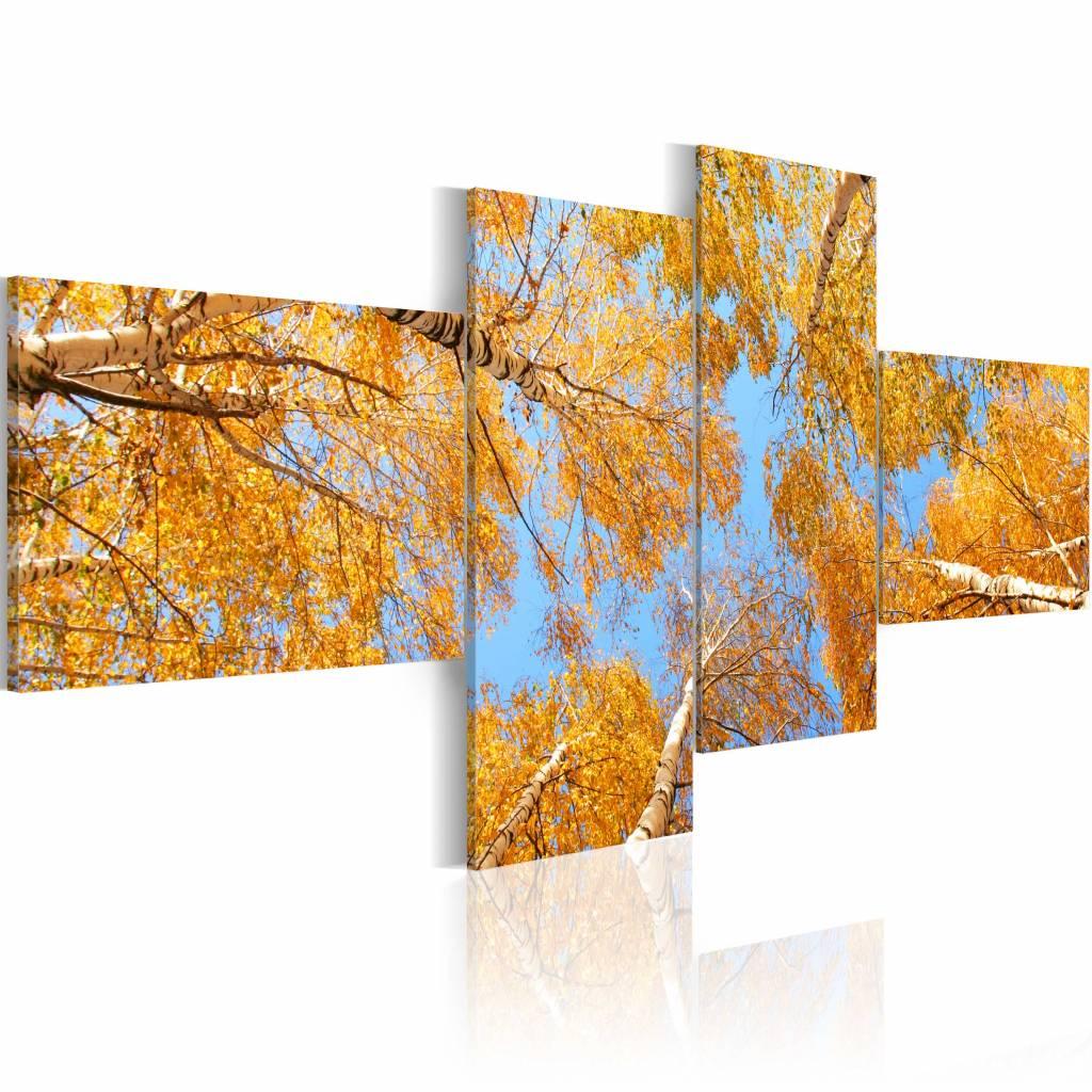 Schilderij - Herfst vanaf de Grond, 4luik , oranje blauw , premium print op canvas