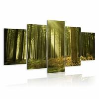 Schilderij - Alleen natuur, groen, 5luik, 2 maten