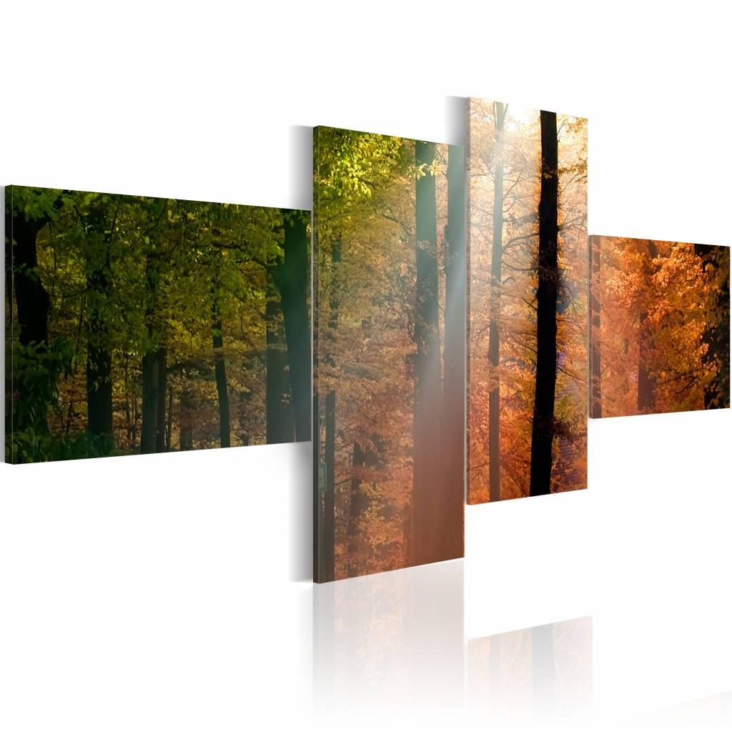 Schilderij - Zonnestralen door de Bomen, 4luik , groen oranje , premium print op canvas