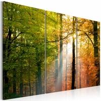 Schilderij - Stil Herfstbos, 3luik , groen oranje , premium print op canvas