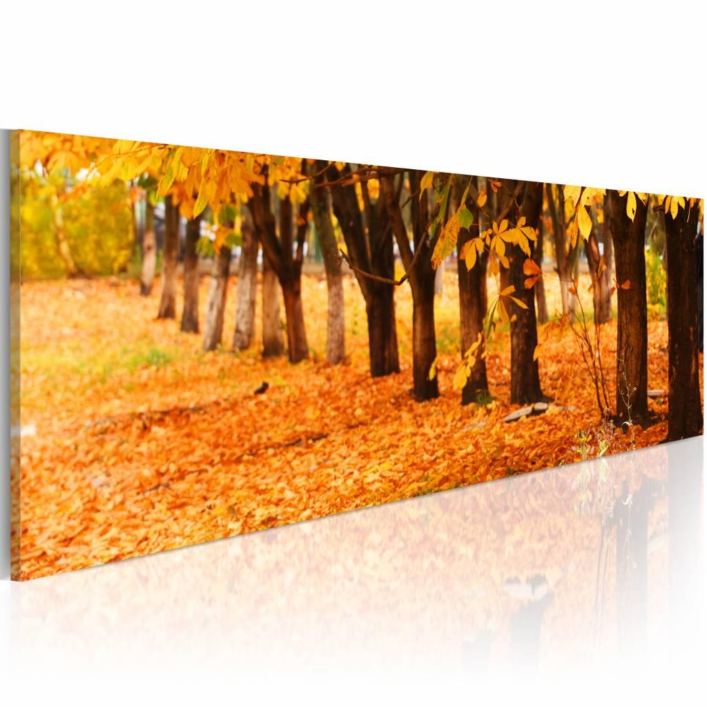 Schilderij - Gouden Bladeren , oranje , premium print op canvas