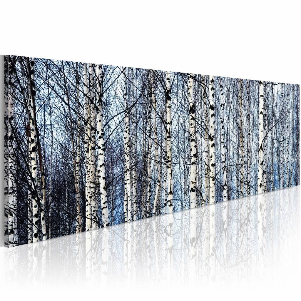 Schilderij - Witte Berken, Blauw/Wit , wanddecoratie , premium print op canvas