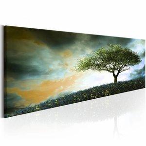 Canvas Schilderij - Malachite Heuvel 150X50 , boom , groen oranje , 1 luik
