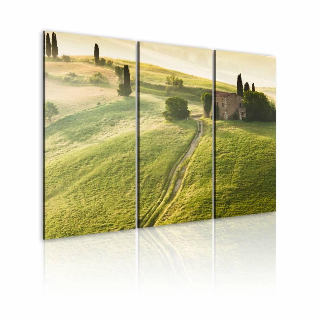 Schilderij - Onder de Zon - Toscane, Groen, 3luik , wanddecoratie , premium print op canvas