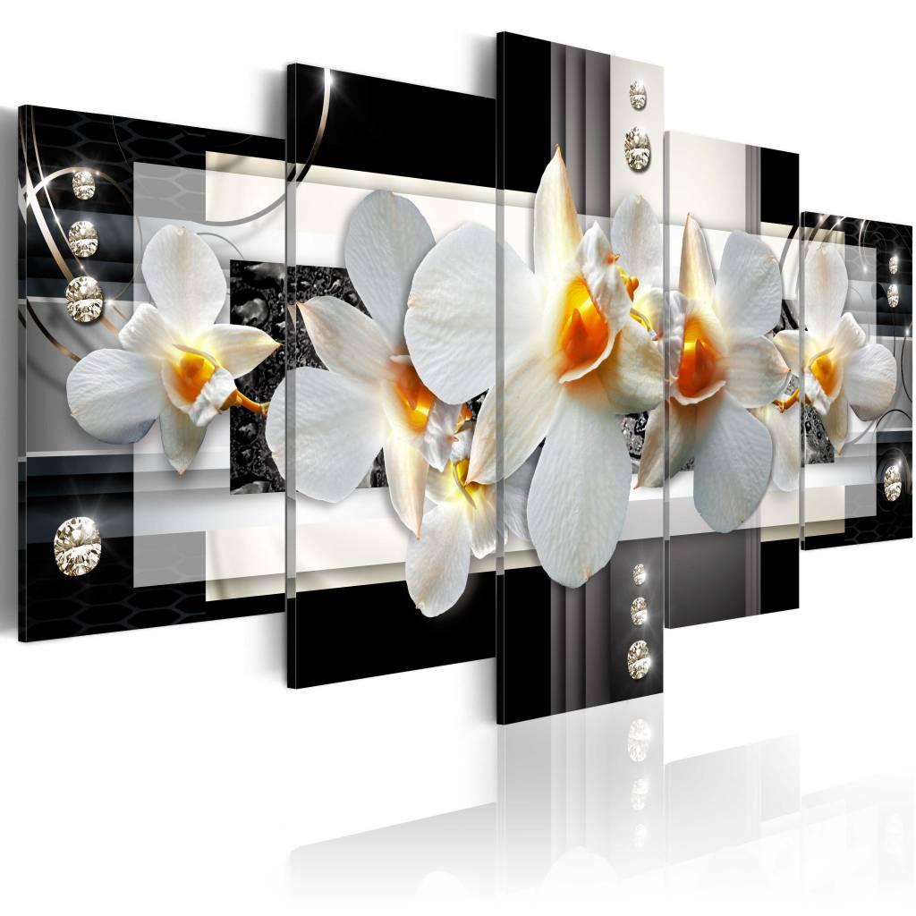 Schilderij - Zonnige Orchidee, 5luik