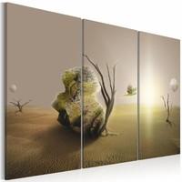 Schilderij - Desert oddity