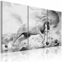 Schilderij - De laatste Eenhoorn II , zwart wit , 3 luik , 2 maten