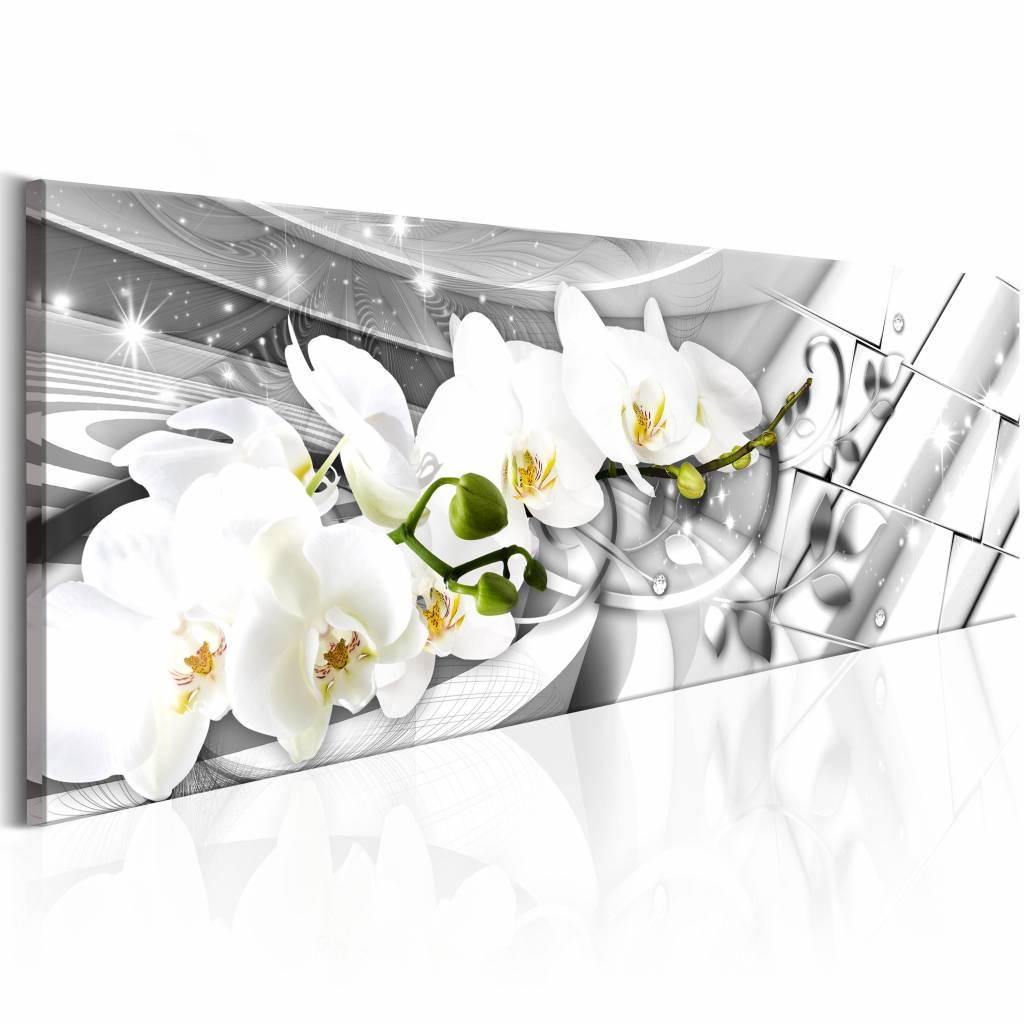 Schilderij - Verdraaide Orchidee