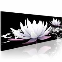 Schilderij - Witte water lelies , zwart ,  150X50cm , 1 luik