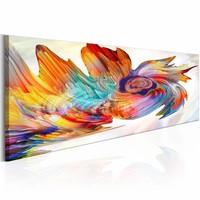 Schilderij - Kleurrijke cycloon  , multi kleur