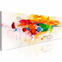 Schilderij - het vieren van kleuren ,    papegaai