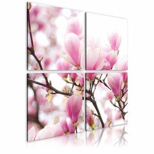 Schilderij - Bloeiende magnolia boom , wit roze , 4 luik , 2 maten