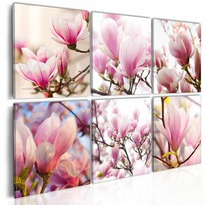 Schilderij - Zuidelijke magnolia's , wit roze , 6 luik , 2 maten