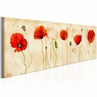 Schilderij - Tears of Poppies
